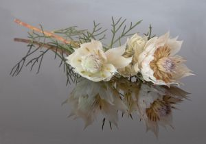 Everlasting by Anna Pha AFIAP