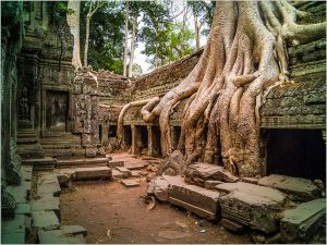 Cambodian Ruins and Roots by William Barnett MPSA AFIAP MNEC