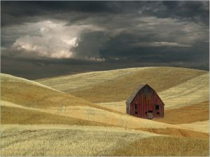 Barn  Wheat and Clouds by J.R. Schnelzer APSA