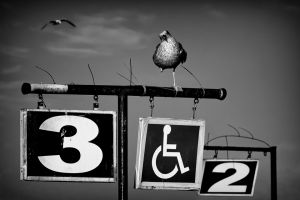 Disabled by Erkan Kalenderli AFIAP UPICR3