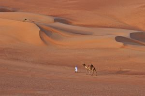 Boy and Camel by Mohammed Alhajri