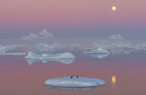 UPI Gold - Moon Rise over Antarctica 1 by Francis King