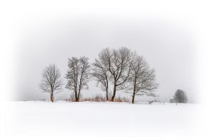 FIAP Gold - Winter Magic by Bernd Stoffl EFIAP