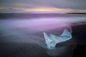 QIDC Bronze (Judges Choice) -  Purple Ice by Laszlo Siman DR AFIAP
