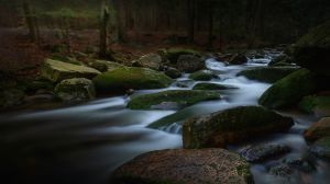 QIDC HM - Mountain Stream by Zygmunt Trylanski