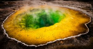 UPI Gold - Morning Glory Pool by Margaret Zommers AFIAP MAPS PPSA