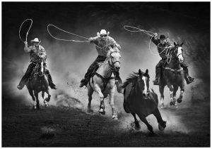 QIDC HM - Cowboys by Man-Kui, Wisely NG