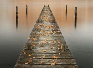 APS Bronze Plaque The Jetty in Autumn byJanet Rogerson EFIAP MAPS