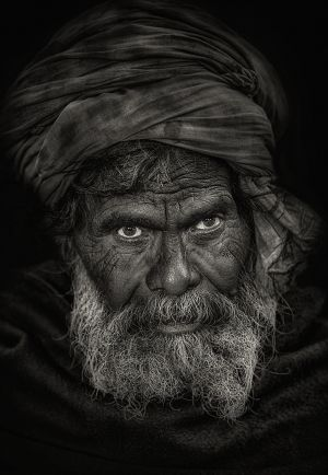 QIDC Bronze (Judges Choice) Batan Face BW by Abdulla Al-Mushaifri